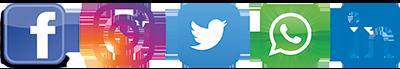 Digital Promotion in search & social media